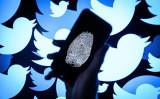 英カーディフ大学の最新調査は、中国関連のツイッターアカウントが偽情報を流したと指摘した(Leon Neal/Getty Images)