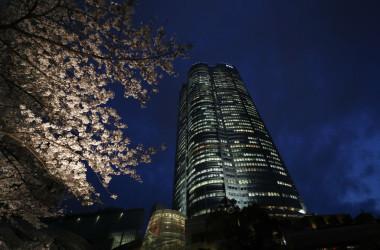 六本木ヒルズ森タワーと夜桜(Photo by Takashi Aoyama/Getty Images)