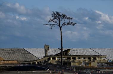 岩手県陸前高田市にある「奇跡の一本松」モニュメント。2021年2月27日に撮影(CHARLY TRIBALLEAU/AFP via Getty Images)