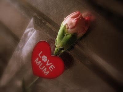 お母さんに愛と感謝をこめて(wanderSick/creative commons)