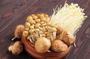 キノコ類に多く含まれる多糖体は、免疫細胞を活性化します。(Shutterstock)