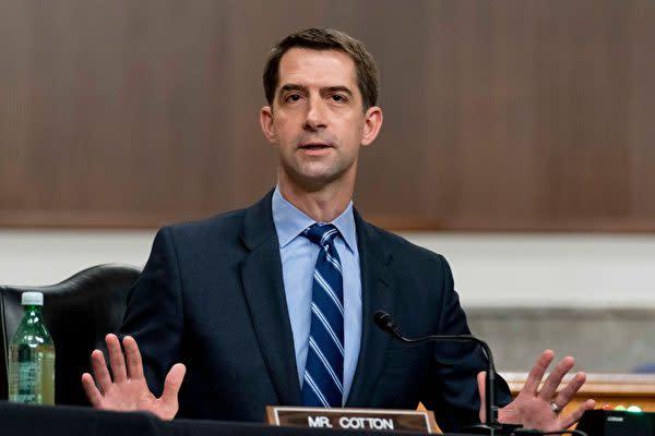 2021年3月25日、米議会の公聴会で発言する共和党のトム・コットン(Tom Cotton)上院議員(Andrew Harnik-Pool/Getty Images)