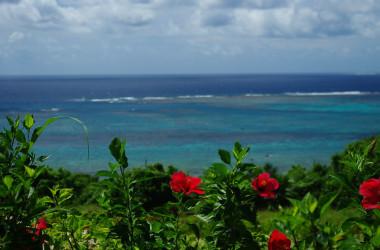 南西諸島には豊かな自然環境が広がっている(N.kimy)