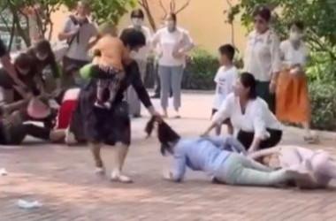 中国・北京野生動物園では7日に来園客同士の殴り合い事件が発生した(スクリーンショット)