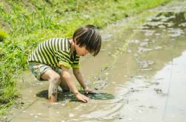イメージ写真 農作業を体験する子供 cba / PIXTA(ピクスタ)
